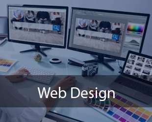 Web Design & Development Training