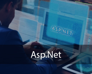 Asp.Net & MVC Training