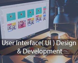 User Interface(UI) Design & Development