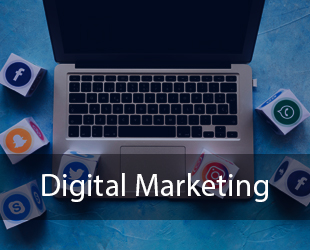 Digital Marketing Training Course